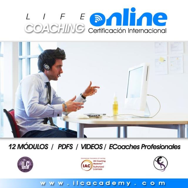 online 2 copy (1)